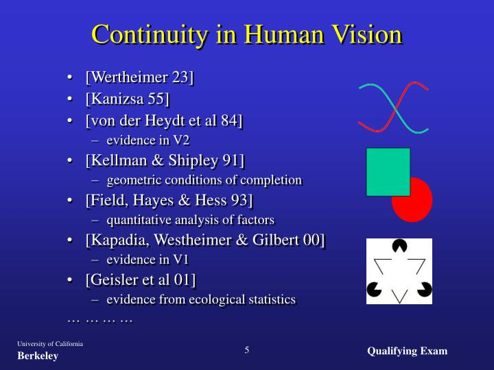 Continuity in Human Vision
