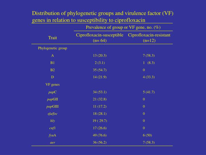 Distribution of phylogenetic groups and virulence factor (VF)