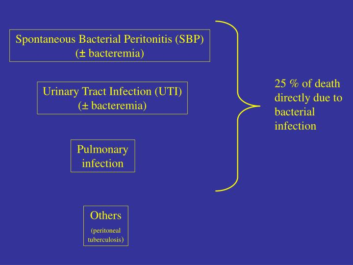 25 % of death directly due to bacterial infection
