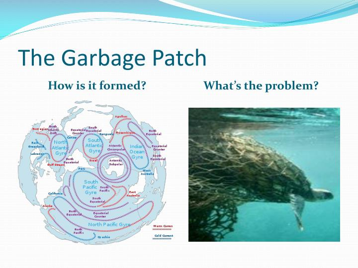 The Garbage Patch