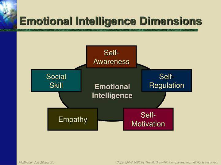 Emotional Intelligence Dimensions