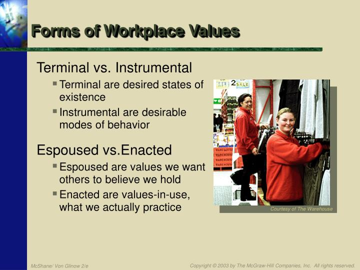 Forms of Workplace Values