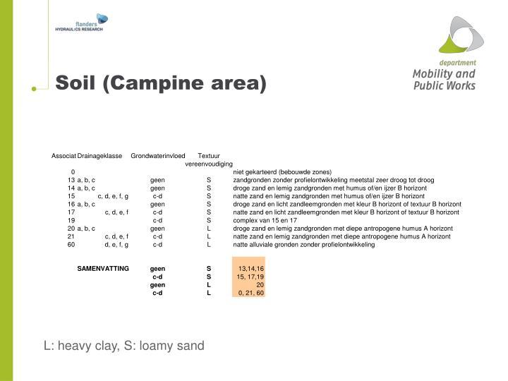 Soil (Campine area)