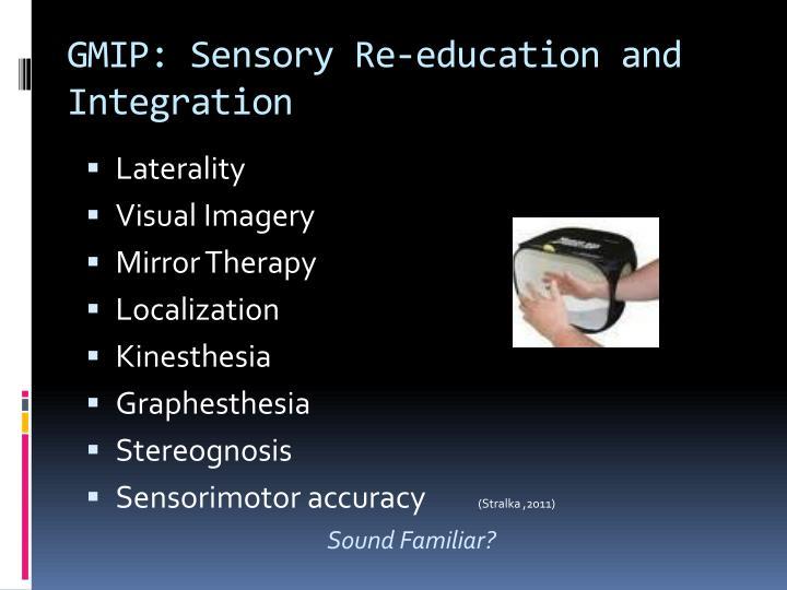 GMIP: Sensory Re-education and Integration