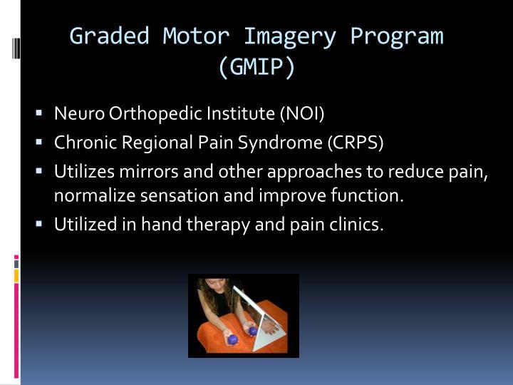 Graded Motor Imagery Program (
