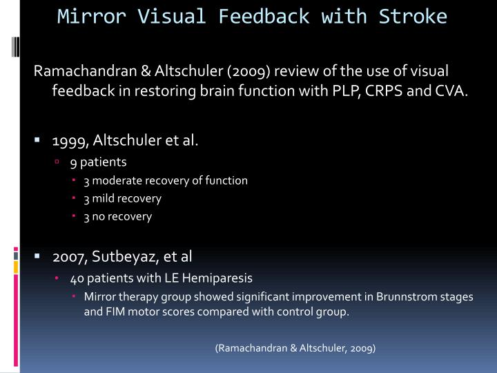 Mirror Visual Feedback with Stroke