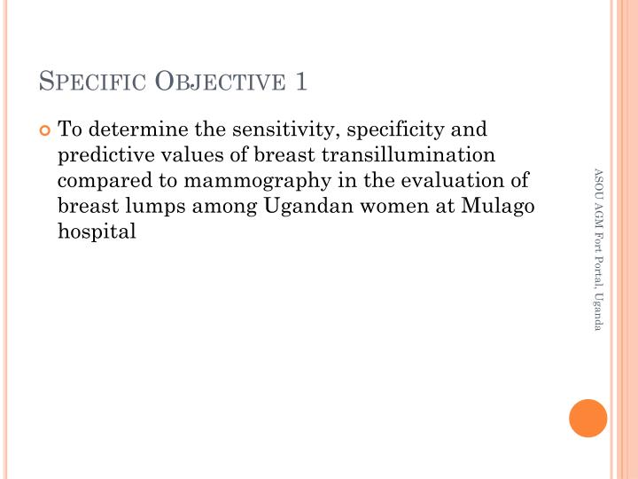 Specific Objective 1