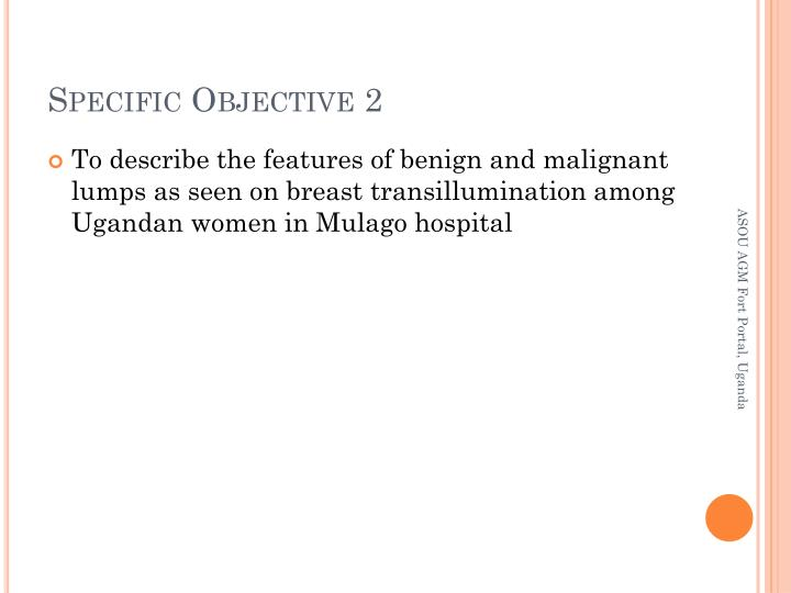 Specific Objective 2