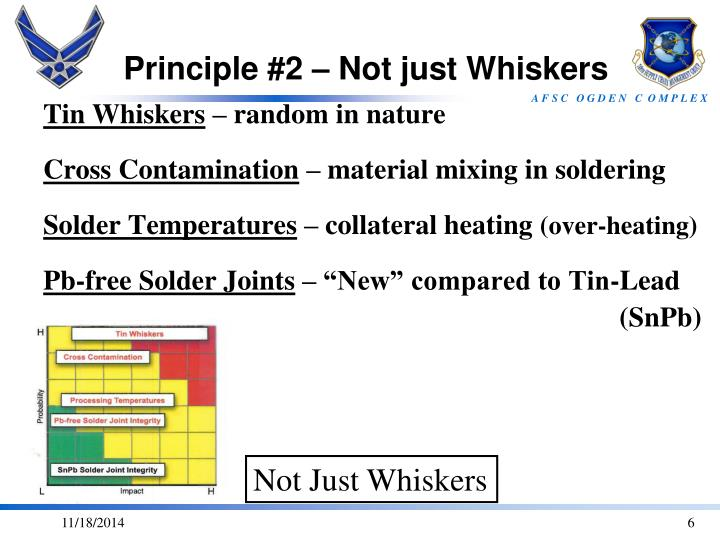 Principle #2 – Not just Whiskers