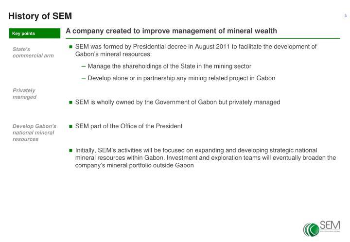 History of SEM