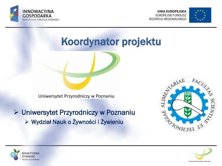 Koordynator projektu