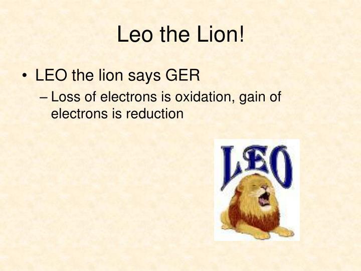 Leo the Lion!