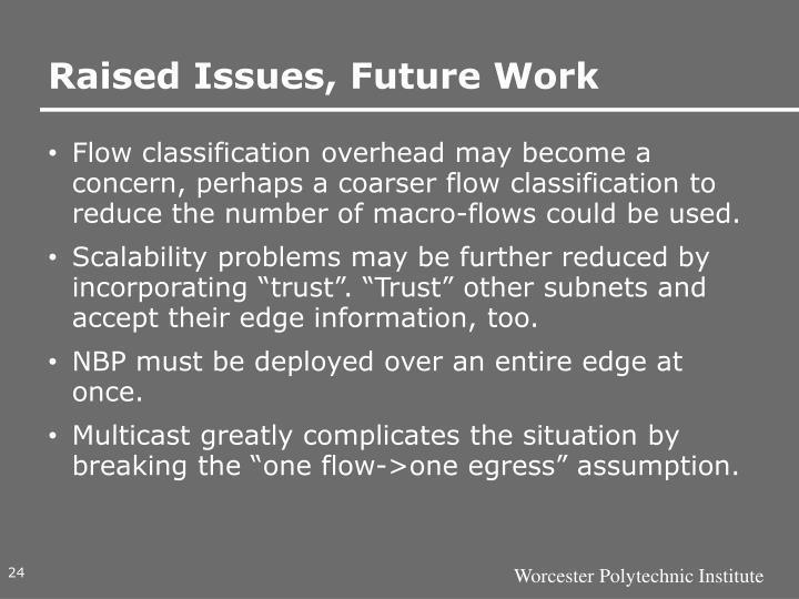 Raised Issues, Future Work