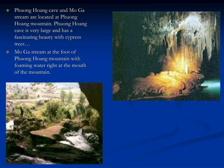 Phuong Hoang cave and Mo Ga stream are located at Phuong Hoang mountain. Phuong Hoang cave is very large and has a fascinating beauty with cypress trees…