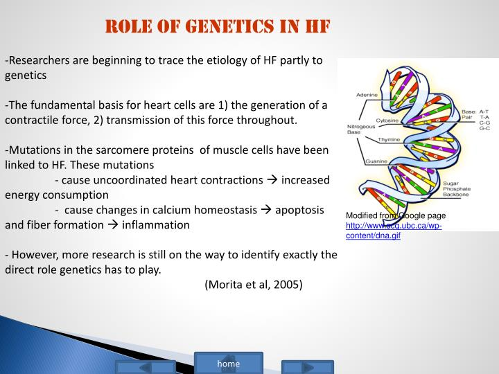 Role of genetics in HF