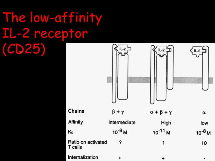 The low-affinity
