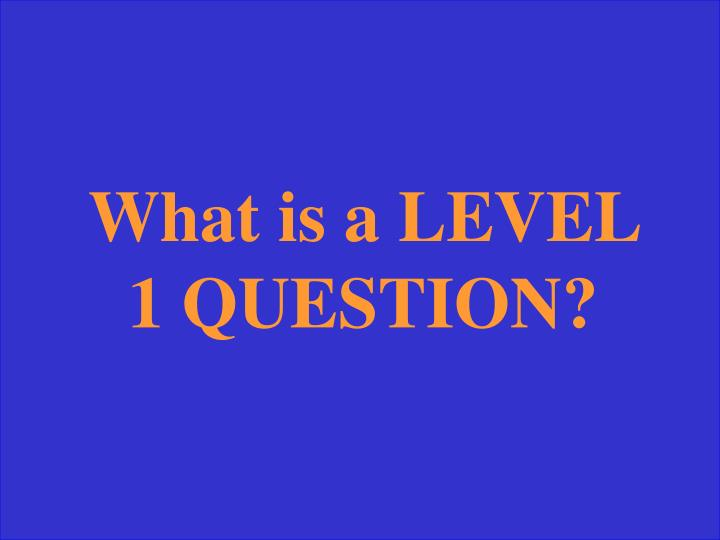 What is a LEVEL 1 QUESTION?