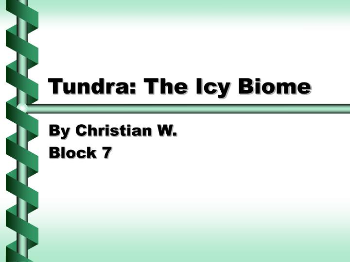 Tundra the icy biome