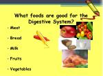 what foods are good for the digestive system