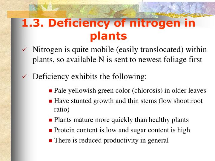 1.3. Deficiency of nitrogen in plants