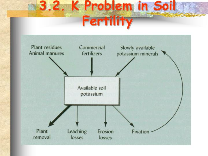 3.2. K Problem in Soil Fertility