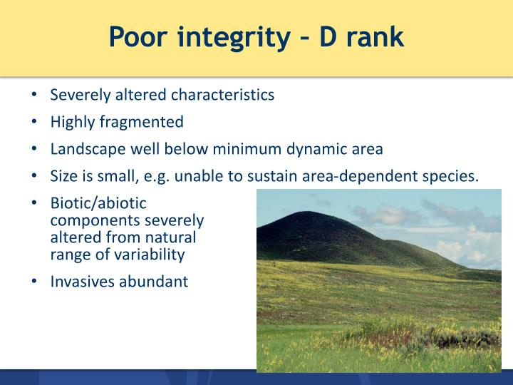 Poor integrity – D rank