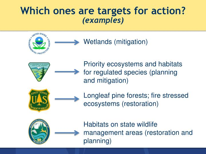 Which ones are targets for action?