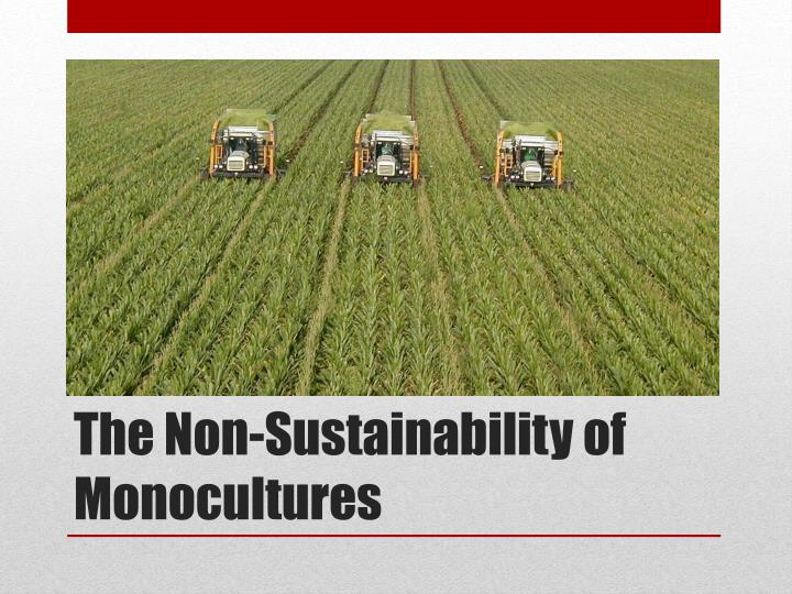 The non sustainability of monocultures