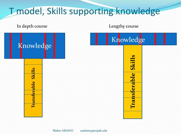 T model, Skills supporting knowledge