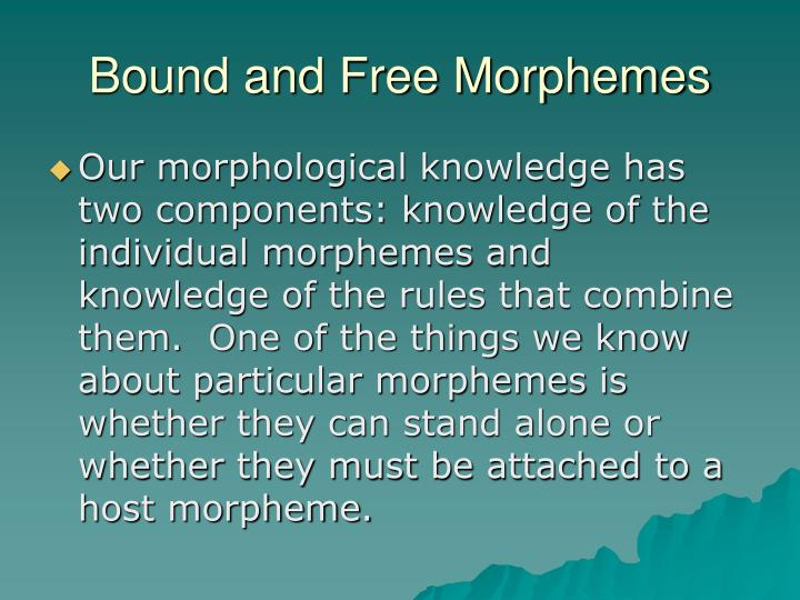 Bound and Free Morphemes