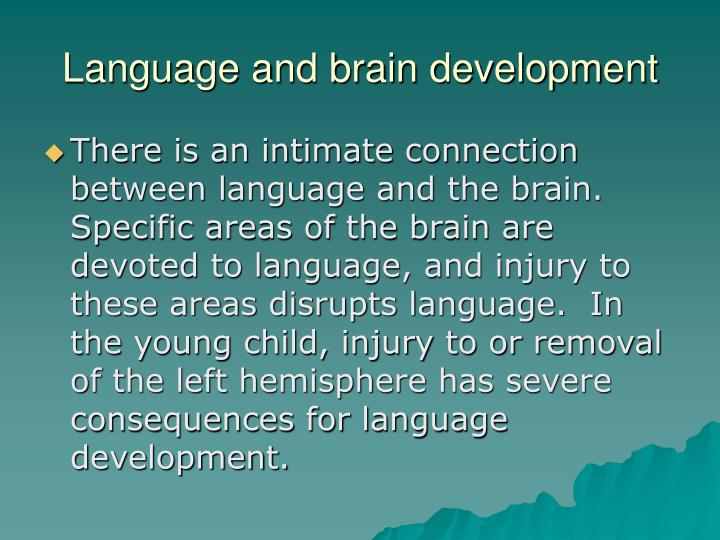 Language and brain development
