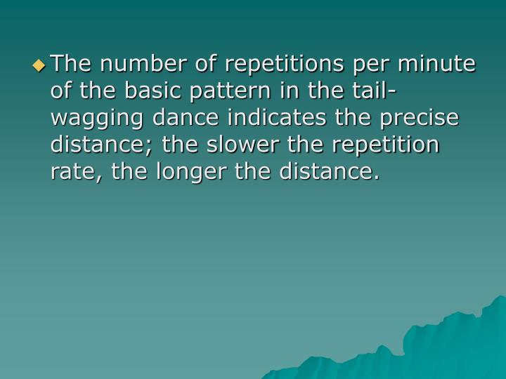 The number of repetitions per minute of the basic pattern in the tail-wagging dance indicates the precise distance; the slower the repetition rate, the longer the distance.