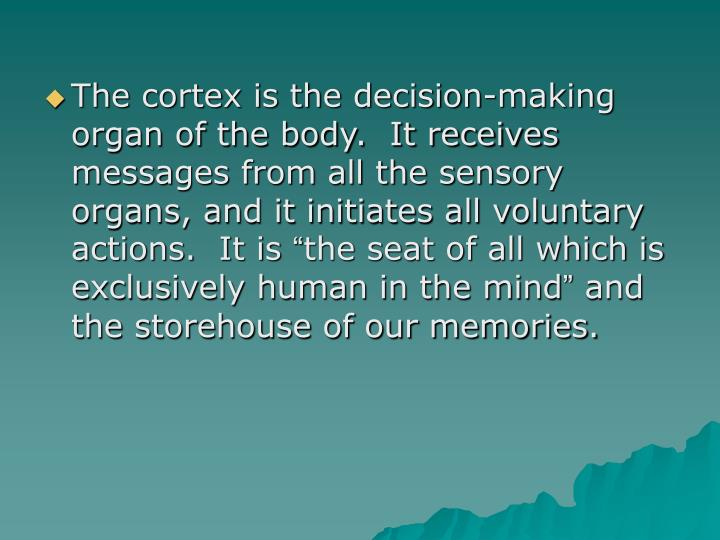 The cortex is the decision-making organ of the body.  It receives messages from all the sensory organs, and it initiates all voluntary actions.  It is
