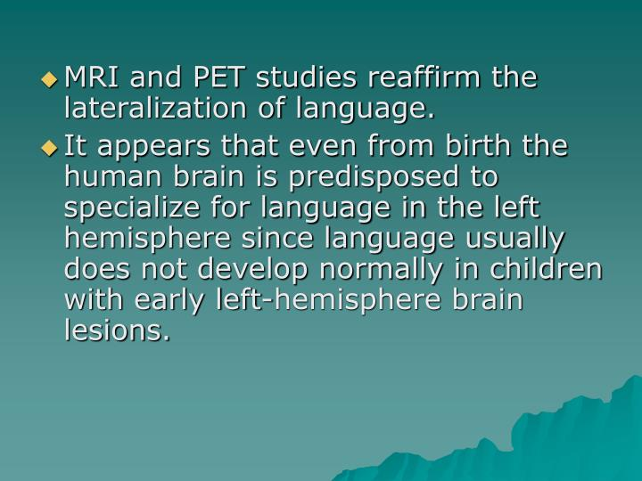 MRI and PET studies reaffirm the lateralization of language.