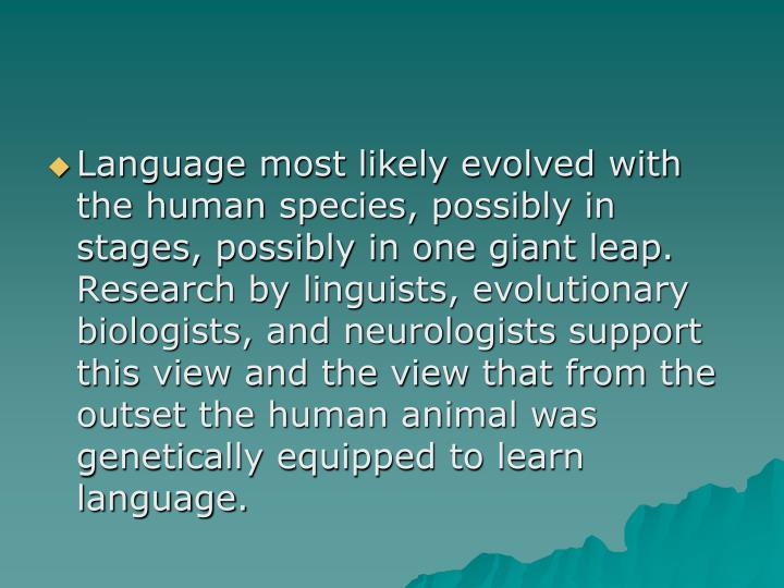 Language most likely evolved with the human species, possibly in stages, possibly in one giant leap.  Research by linguists, evolutionary biologists, and neurologists support this view and the view that from the outset the human animal was genetically equipped to learn language.