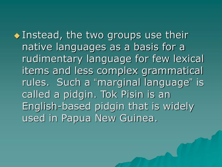 Instead, the two groups use their native languages as a basis for a rudimentary language for few lexical items and less complex grammatical rules.  Such a