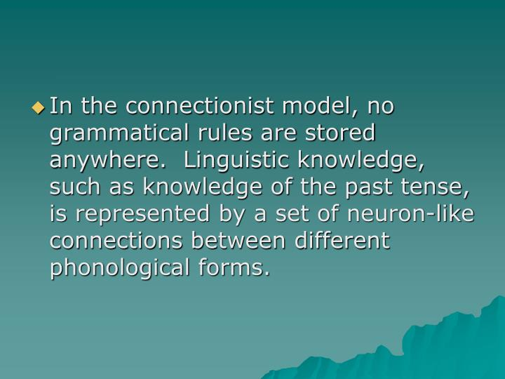 In the connectionist model, no grammatical rules are stored anywhere.  Linguistic knowledge, such as knowledge of the past tense, is represented by a set of neuron-like connections between different phonological forms.