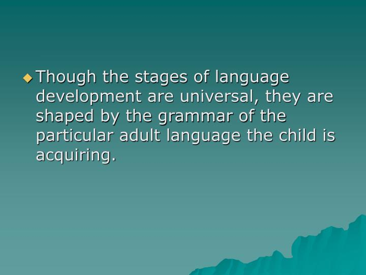 Though the stages of language development are universal, they are shaped by the grammar of the particular adult language the child is acquiring.