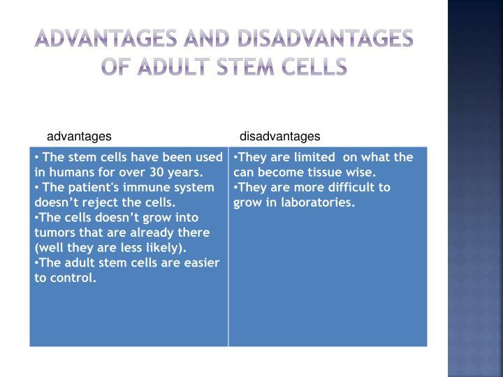 Adult Stem Cell Advantages 16