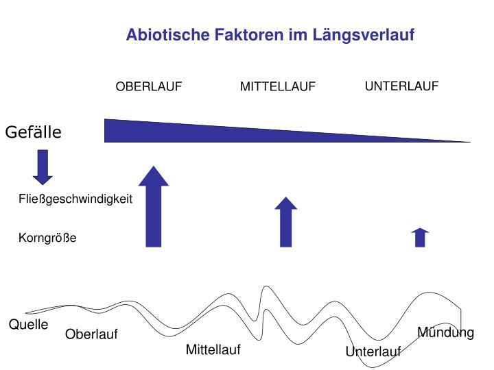 Abiotische Faktoren im Längsverlauf