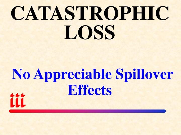 CATASTROPHICLOSS
