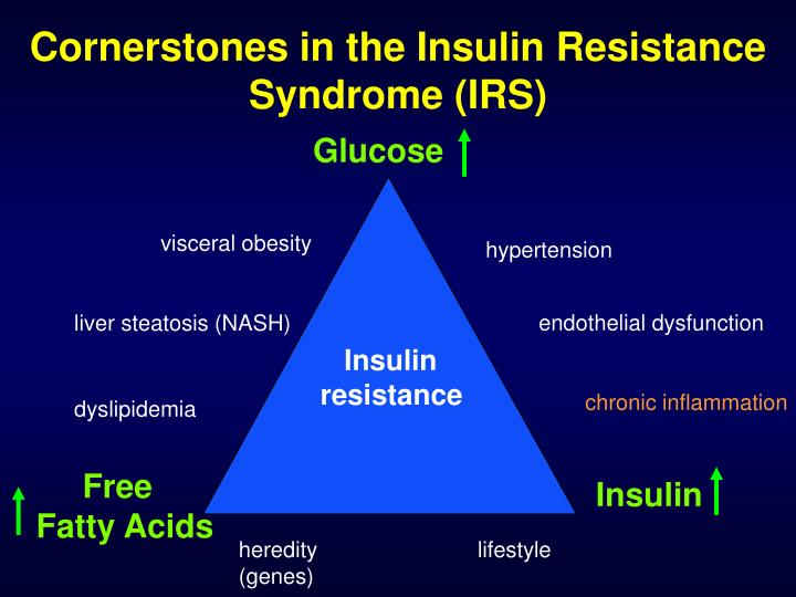 Cornerstones in the Insulin Resistance Syndrome (IRS)