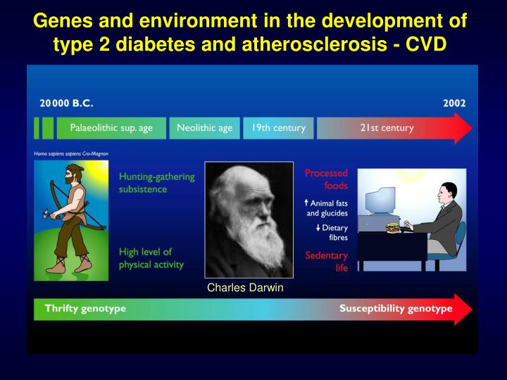 Genes and environment in the development of type 2 diabetes and atherosclerosis - CVD