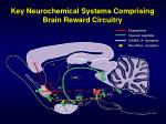 key neurochemical systems comprising brain reward circuitry