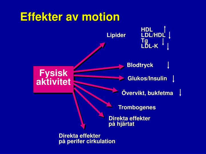 Effekter av motion