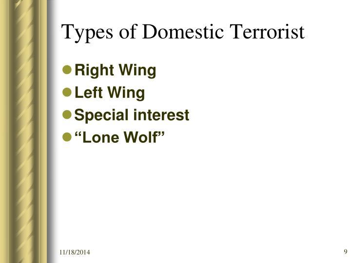 Types of Domestic Terrorist