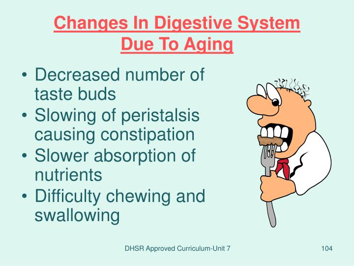 Changes In Digestive System