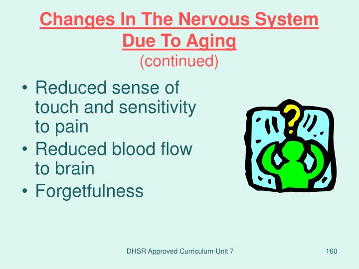 Changes In The Nervous System Due To Aging