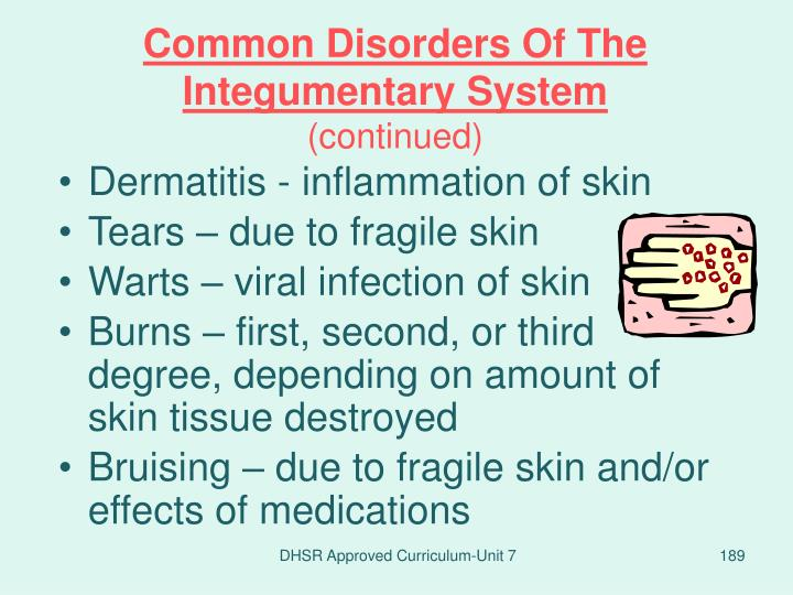 Common Disorders Of The Integumentary System