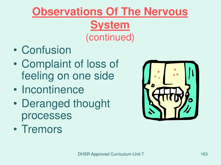 Observations Of The Nervous System